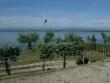 Foto 6750 - Otmuchów - Ośrodek Wypoczynkowy Kotwica