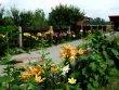 Foto 33580 - Dąbrowice - Agroturystyka Skrzypczyk