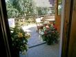 Foto 8907 - Poronin - Pokoje Gościnne u Tadka