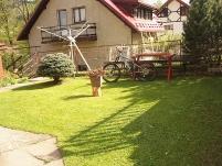 Pokoje Gościnne w Dusznikach Zdroju - zdjęcie główne