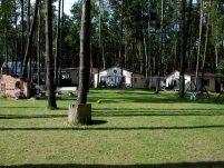 Domki Letniskowe Sosenkowe - zdjęcie główne