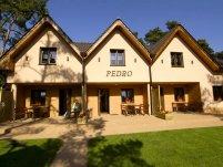 Domki Pedro - zdjęcie główne