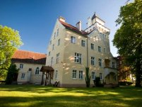 Zamek Nowęcin - zdjęcie główne