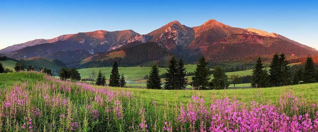 Góry to idealne miejsce na wypoczynek z noclegiem